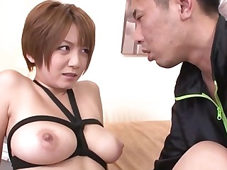 Bus Busty Big Cock Creampie Hardcore HD Hot Japanese